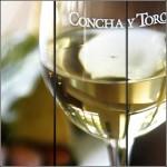 concha-y-toro-3